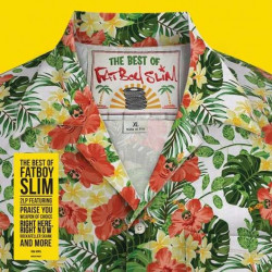 Fatboy Slim • The Best Of (2LP)