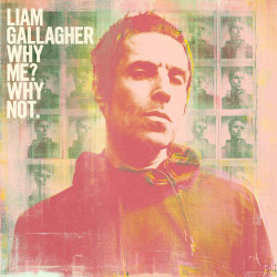 Gallagher Liam • Why Me? Why Not.