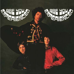 Hendrix Jimi Experience • Are You Experienced (2LP)