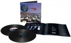 Pink Floyd • A Momentary Lapse Of Reason (2LP)
