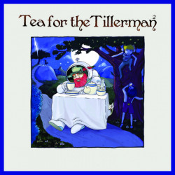 Yusuf, Cat Stevens • Tea For The Tillerman 2 (LP)